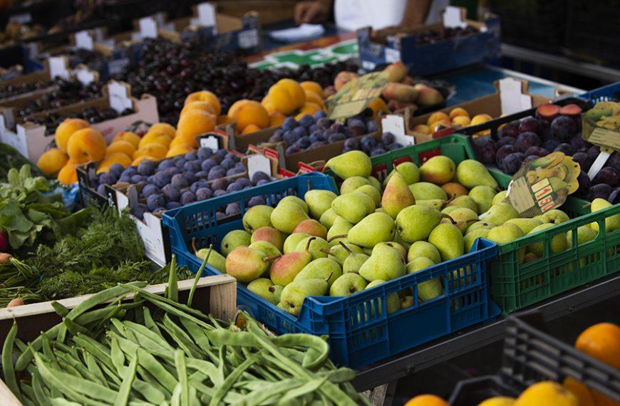 El movimiento Slow Food